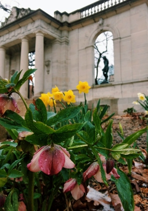 Spring at The Rodin Museum Philadelphia