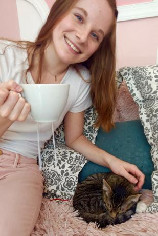 Tobey & Friend Kawaii Kitty Cafe Philadelphia