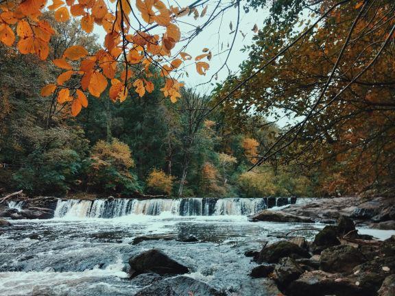 Wissahickon Creek Philadelphia