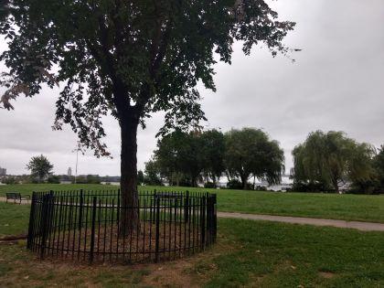 Penn Treaty Park Philadelphia