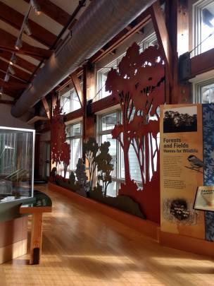 John Heinz National Wildlife Refuge Philadelphia