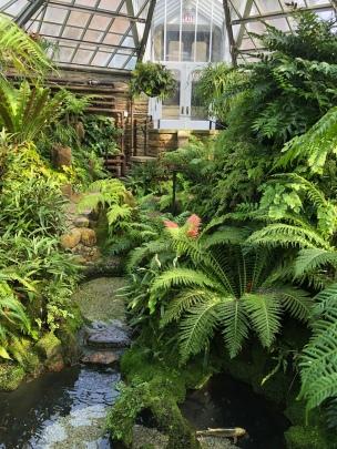 Fernery Morris Arboretum Philadelphia