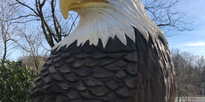 Eagles, Conowingo Dam